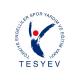 Türkiye Engelliler Vakfı (TESYEV) Burs Başvurusu 2019-2020 Başladı!