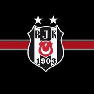 YTÜ Beşiktaş grup logosu