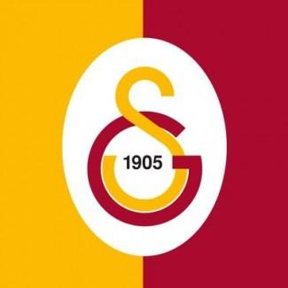 YTÜ Galatasaray grup logosu